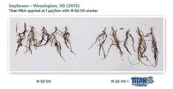 02-15-soybean-blog-02