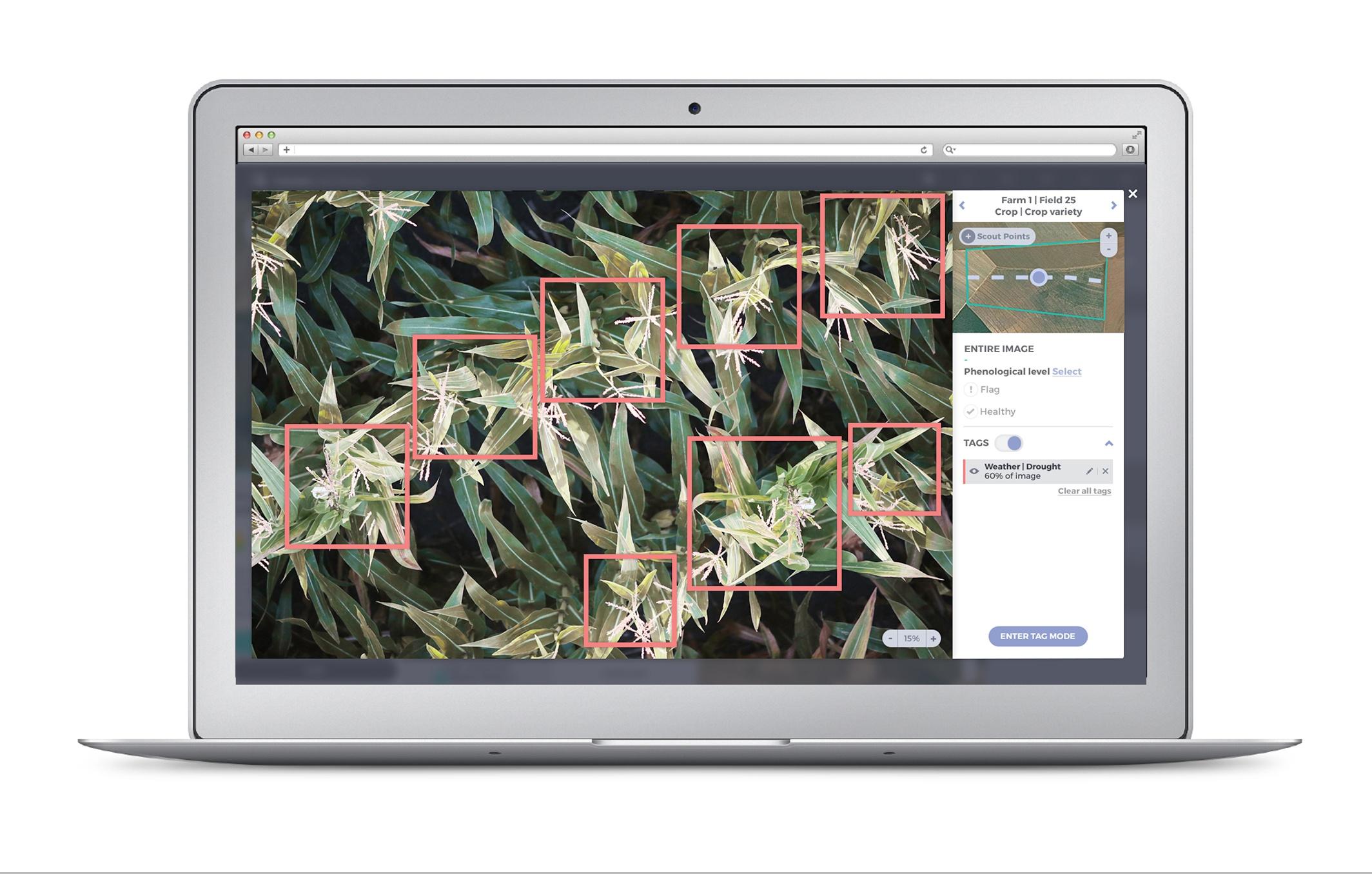 Identifying drought stress in corn with taranis platform.jpg