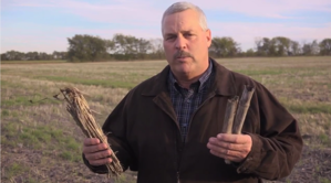 Steve Sexton Crop Residue