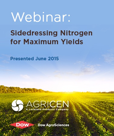Sidedressing Nitrogen for Maximum Yields