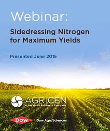 Sidedressing Nitrogen for Maximum Yields