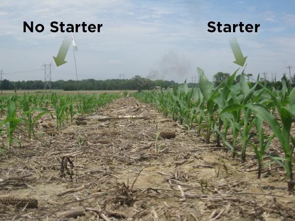 starter_vs_nostarter
