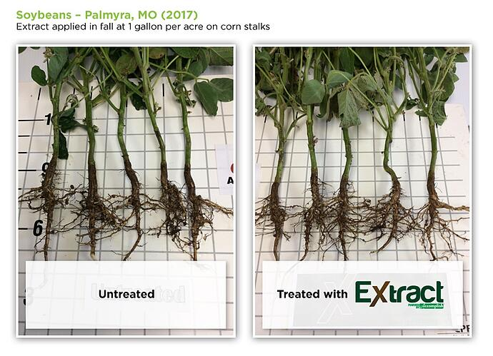 soybeans-roots-extract.jpg