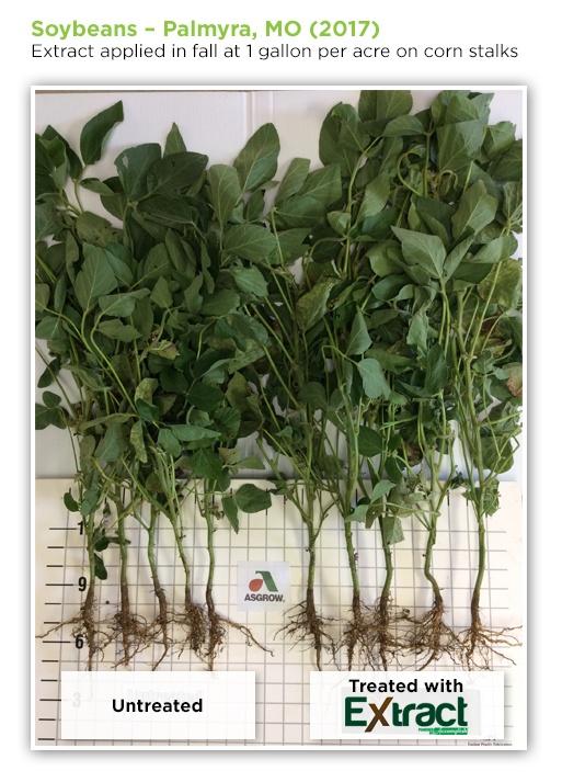 soybeans-2.jpg