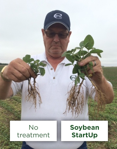 soybean_startup_1